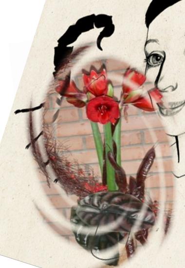 Цветы для Скорпиона